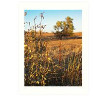 Out Standing in the Field Art Print