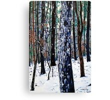'Woods in Snow' Canvas Print