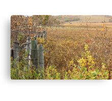 Gate to the Pasture Canvas Print