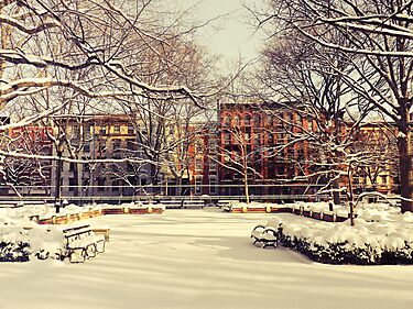 Winter - East Village - New York City by Vivienne Gucwa