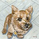 Sterling, the Amazing Wonderdog by bernzweig