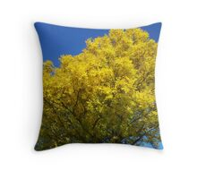 Sky-Diving Throw Pillow
