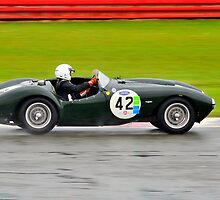 Frazer Nash Sebring No 42 by Willie Jackson