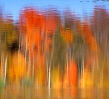 Fall Reflections by Eva Kato