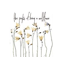 Perks by wallflowers