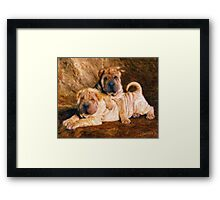 Sharpei Dogs in Impasto Framed Print