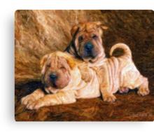 Sharpei Dogs in Impasto Canvas Print