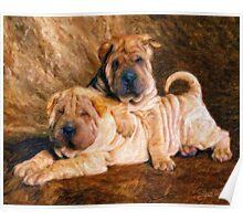 Sharpei Dogs in Impasto Poster
