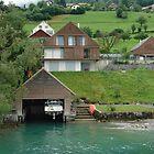 Boat house on the slope on Lake Lucerne by ashishagarwal74