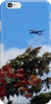 As the season flies by ('Leaf'ing below a jet plane) by Mui-Ling Teh