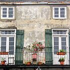 New Orleans Windows and Doors III by Igor Shrayer