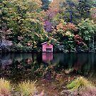 Fall Reflections by donnau