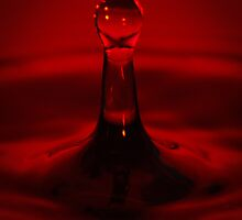 Water drolpet red by Michael Hollinshead