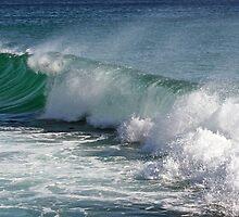 Wind-blown wave by Greta van der Rol