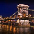 Budapest Bridges by fine-art-prints