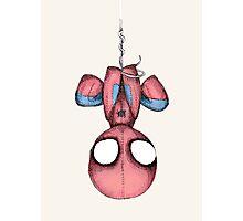 SpiderPlush Photographic Print