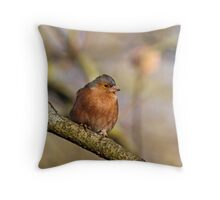 Chaffinch in Sunlight Throw Pillow