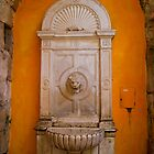 Lion&#x27;s Head Marble Fountain, Split, Croatia by fg-ottico