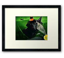 Witches Framed Print
