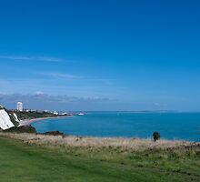 Eastbourne from Whitbread Hollow by Sue Robinson
