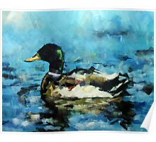 Abstract Malard Duck Painting Poster