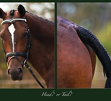 Head or Tail by Odille Esmonde-Morgan
