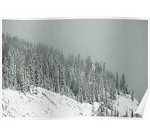 Winter's Veil Poster