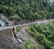 Waterfall Way by bobbi marchini