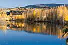 Bonanza Creek Pond by Yukondick