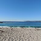 Monastery Beach Carmel, CA  by Sandra Gray