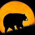 Yellow Moon Bear by Betsy  Seeton