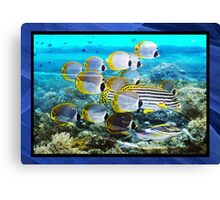 Reef style Canvas Print