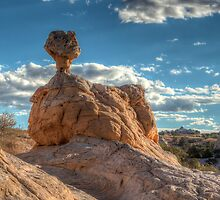 Rock Duck On Her Nest by rjcolby