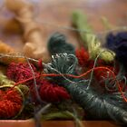 Weaver's Yarn by Cindy-Lou Holland