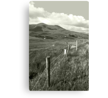 lush fields of ireland Canvas Print