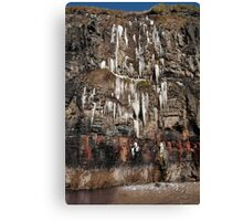 melting cascade of icicles on a cliff face Canvas Print
