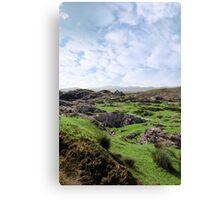ruin in irish rocky landscape Canvas Print