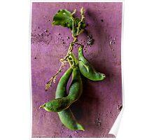 Fava Beans (no Chianti) Poster