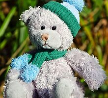 Time For The Winter Woollies :) by Susie Peek