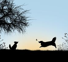 Frollicking Collies at Sunset by kathrine5678