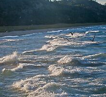 Surfing Lake Michigan 05 by Cary Marks