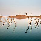 Aqua Australia 2012 by David Haworth