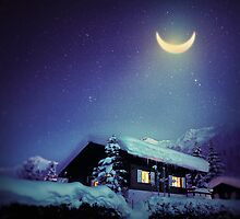 Winter Nights by Richard Davis
