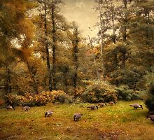 Autumn Grazing by Jessica Jenney