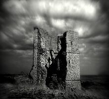 The Ruins of Hadleigh Castle (English Heritage) by larry flewers
