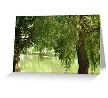 Willow trees Greeting Card