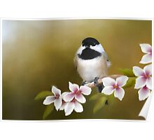 Apple Blossom Chickadee Poster