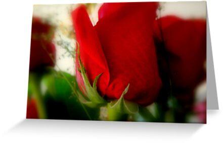 ......Memories - Calendar Image ^ by ctheworld