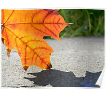 Leaf 2 Poster