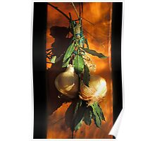 Bay leaves and onions Poster